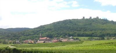 Domaine Leiber